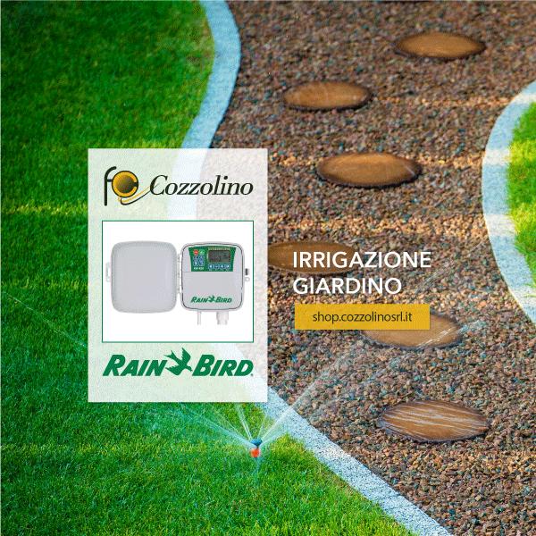 programmatori per l'irrigazione, stazione fissa, Rain Bird, ESP-RZX, irrigazione giardino, Cozzolino