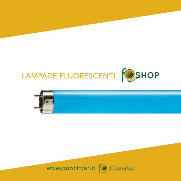 lampade fluorescenti, shop Cozzolino