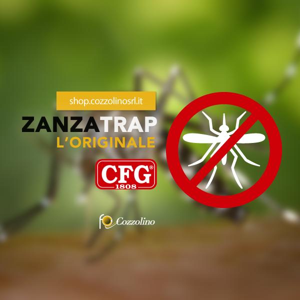 ZanzaTrap, Cozzolino Srl, shop Cozzolino